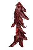 Κάθετη φωτογραφία των ξηρών κόκκινων πιπεριών Στοκ Εικόνες
