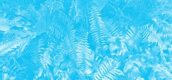 Κάθετος κήπος με το τροπικό φύλλο Monotone μπλε στοκ εικόνες με δικαίωμα ελεύθερης χρήσης