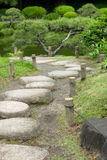 Κάθετο δέντρο πεύκων, δρόμος πετρών στον ιαπωνικό κήπο zen Στοκ φωτογραφίες με δικαίωμα ελεύθερης χρήσης