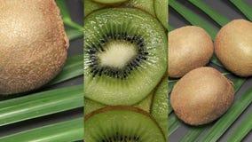Κάθετο βίντεο για τις κοινωνικές εφαρμογές μέσων στις κινητές συσκευές Φρέσκα ακατέργαστα εξωτικά τροπικά φρούτα ακτινίδιων αποκα απόθεμα βίντεο