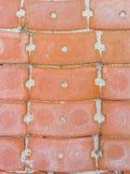 Κάθετο πορτοκαλί τούβλο στη διάβαση πεζών Στοκ Εικόνα
