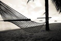 Κάθισμα λίκνων Στοκ Εικόνες