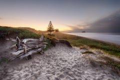 Κάθισμα Driftwood Στοκ Φωτογραφίες
