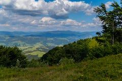 Κάθοδος από έναν υψηλό λόφο σε μια πράσινη κοιλάδα μεταξύ των αλσυλλίων των δέντρων στοκ φωτογραφία