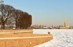 Κάθοδος στον ποταμό Neva και την άποψη του Peter και του φρουρίου του Paul στοκ φωτογραφία