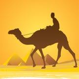 Κάιρο, πυραμίδες φυσικές Στοκ εικόνα με δικαίωμα ελεύθερης χρήσης