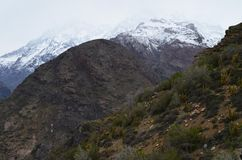 Κάκτοι στην εθνική επιφύλαξη RÃo Blanco, κεντρική Χιλή, μια υψηλή κοιλάδα βιοποικιλότητας στο Los Άνδεις στοκ φωτογραφίες