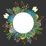 Κάκτος και Succulents Στρογγυλό υπόβαθρο για το κείμενό σας επίσης corel σύρετε το διάνυσμα απεικόνισης Στοκ Φωτογραφίες