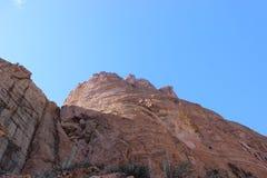 Κάκτος λόφων ιχνών Apache Στοκ εικόνα με δικαίωμα ελεύθερης χρήσης