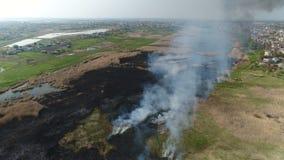 Κάλαμοι πυρκαγιάς στον ποταμό Εναέρια έρευνα απόθεμα βίντεο