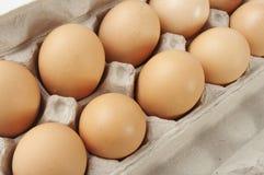κάλτσα φωτογραφιών αυγών &ch Στοκ Φωτογραφίες