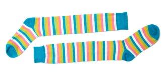 κάλτσες Στοκ Εικόνα