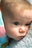 κάλυμμα μωρών Στοκ Εικόνες
