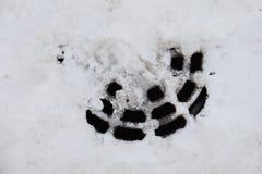 Κάλυψη καταπακτών το χειμώνα Στοκ Εικόνες