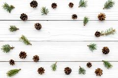 κάλυψη παγωμένη διανυσματικός χειμώνας προτύπων Pinecones και κομψοί κλάδοι στην άσπρη τοπ άποψη υποβάθρου copyspace Στοκ φωτογραφία με δικαίωμα ελεύθερης χρήσης