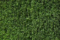 Κάλυψη της τεχνητής πράσινης χλόης Στοκ Εικόνες