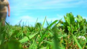 Κάμερα στενό επάνω στο σε αργή κίνηση χλόης Παιχνίδι ατόμων με τη σφαίρα στον τομέα χλόης με το μπλε ουρανό το καλοκαίρι φιλμ μικρού μήκους