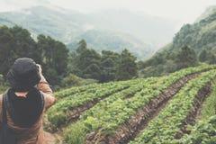 Κάμερα χρήσης γυναικών για να πάρει την εικόνα της strawberrry φυτείας στο MO Στοκ Εικόνες