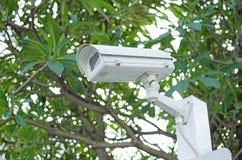 Κάμερα CCTV σε ένα υπόβαθρο φύσης Στοκ φωτογραφία με δικαίωμα ελεύθερης χρήσης