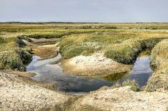 Κάμπτοντας παλιρροιακός κολπίσκος στοκ φωτογραφία με δικαίωμα ελεύθερης χρήσης