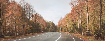 Κάμψη στο δρόμο που περνά από ένα δάσος φθινοπώρου Στοκ φωτογραφία με δικαίωμα ελεύθερης χρήσης