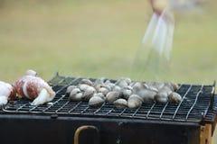 Κάνετε BBQ το κόμμα με το φρέσκο θαλασσινό κοχύλι και το καλαμάρι στη σχάρα με η χρυσή ανατολή επάνω από το βουνό και την υδρονέφ Στοκ Φωτογραφία