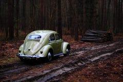 Κάνθαρος 1957 της VW Στοκ Εικόνες