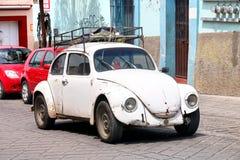 Κάνθαρος του Volkswagen Στοκ φωτογραφία με δικαίωμα ελεύθερης χρήσης