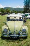 Κάνθαρος του Volkswagen Στοκ Φωτογραφίες