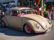 Κάνθαρος του Volkswagen Στοκ εικόνες με δικαίωμα ελεύθερης χρήσης