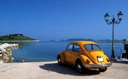 Κάνθαρος του Volkswagen Στοκ Εικόνα