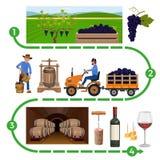 Κάνοντας διαδικασία κρασιού διανυσματική απεικόνιση