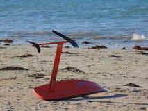 Κάνοντας σερφ πίνακας ικτίνων στην παραλία στοκ φωτογραφία