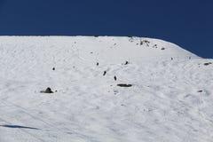 Κάνοντας σκι συριστήρας Π.Χ. Καναδάς κλίσεων στοκ φωτογραφία με δικαίωμα ελεύθερης χρήσης