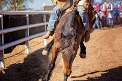 Κάουμποϋ που οδηγά ένα άλογο Bucking Bronc σε ένα ροντέο χώρας Στοκ φωτογραφία με δικαίωμα ελεύθερης χρήσης