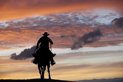 Κάουμποϋ σε ένα άλογο Στοκ Εικόνες