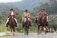 Κάουμποϋ στην παραδοσιακή οδήγηση ένδυσης στις Άνδεις του Ισημερινού Στοκ Εικόνες