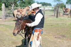 κάουμποϋ το άλογό του στοκ φωτογραφία