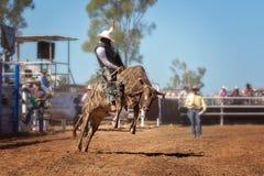 Κάουμποϋ το οδηγώντας bucking Bull στο ροντέο Στοκ Φωτογραφίες