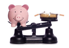 Κάπνισμα μιας σπατάλης των χρημάτων Στοκ Εικόνα