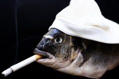 κάπνισμα ψαριών Στοκ Εικόνα