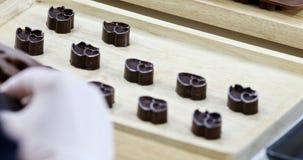 Κάποιος αφαιρεί τις σοκολάτες από διαμορφωμένη την καρδιά φόρμα απόθεμα βίντεο