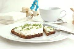 κάρδαμο εξοχικών σπιτιών τυριών Στοκ φωτογραφία με δικαίωμα ελεύθερης χρήσης