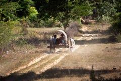 Κάρρο βοδιών στο χωριό κοντά στην παγόδα Mingun, το Μιανμάρ Στοκ Εικόνες