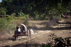 Κάρρο βοδιών στο χωριό κοντά στην παγόδα Mingun, το Μιανμάρ Στοκ Φωτογραφία