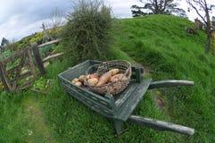 Κάρρο με το λαχανικό Στοκ φωτογραφία με δικαίωμα ελεύθερης χρήσης