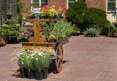 Κάρρο λουλουδιών γερανιών Στοκ Εικόνες