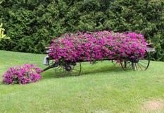 Κάρρο λουλουδιών Στοκ Εικόνα