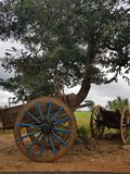 Κάρρο του Bullock στοκ εικόνες