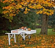κάρρο φθινοπώρου μήλων Στοκ Εικόνες